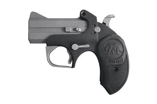 Bond Arms Big Bear